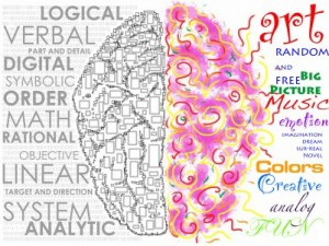 Two types of doctors; surgeons vs. non-surgeons.  Similar to right brained vs. left brained.