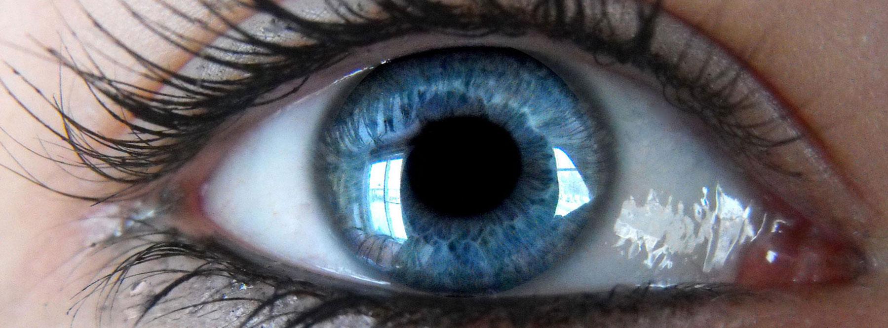25 Gauge Vitrectomy Eye Surgery | Randall Wong, M.D. | Retina Specialist, Fairfax, Virginia 22031